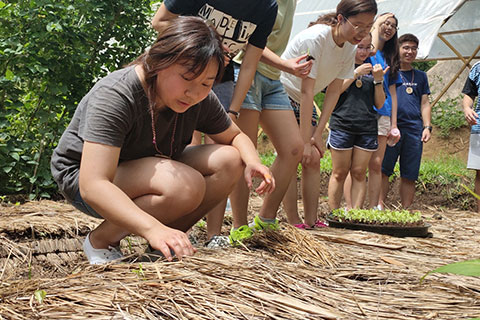 Youth Permaculture Camp