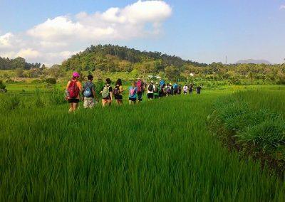 East Bali Explorer Camp